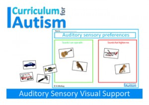 auditory visual support
