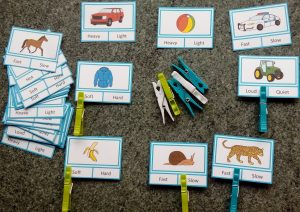 Adjective Clip Cards